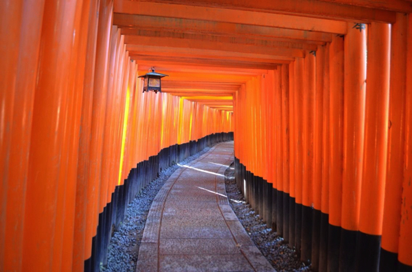 Tunnel of the fantastic Torii