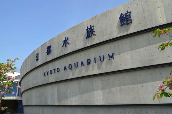 京都水族館に到着!