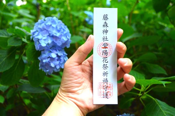 この共通券で第一・第二どちらの紫陽花苑にも入園可能