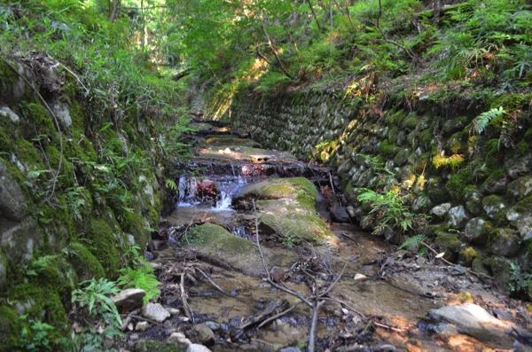 登山道のそばを流れる小川