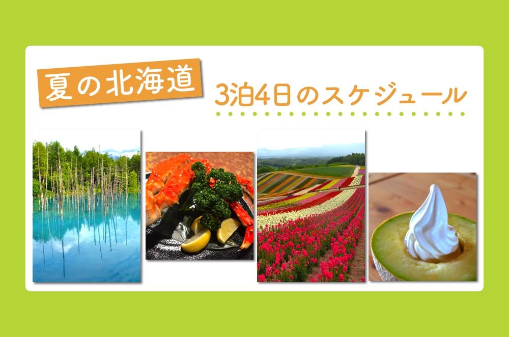 [旅行記]子どもといっしょに夏の北海道へ! 3泊4日の観光スケジュールを公開します! | ごりらのせなか