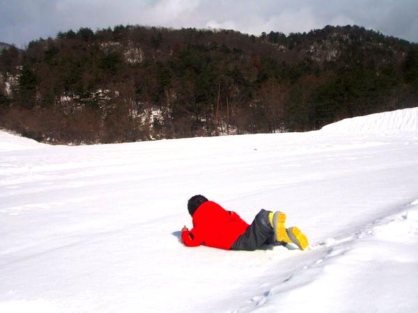 雪にダイブする息子